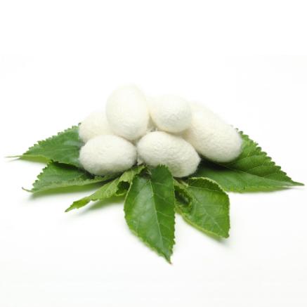 Hydrolysed Silk